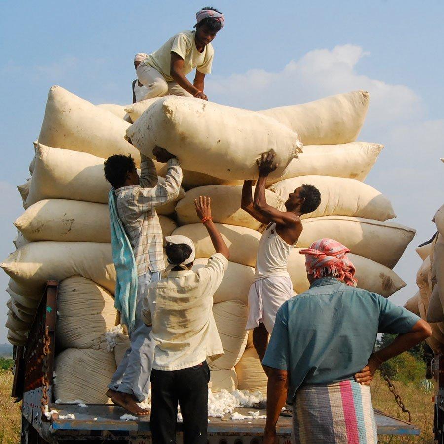 Production - Cotton